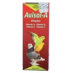 Papağan E Vitamini - Avisol A