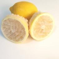Limon Bonesi / 10 Adet / Bitki Çayı Bonesi